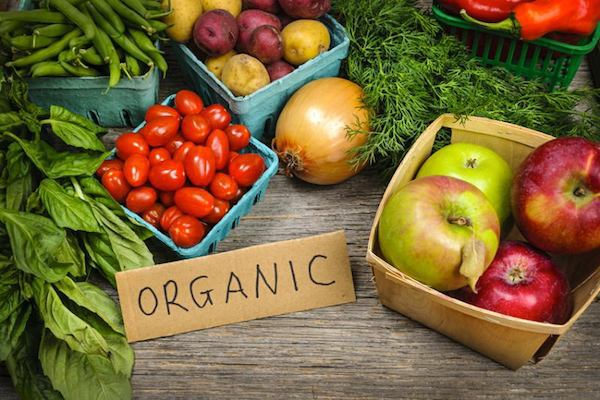 Buying Organic Food for Beginners