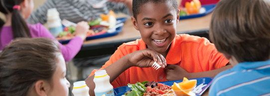 Back to School Healthy Lunches