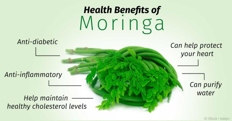 Why Moringa Is Such a Magical Herb?