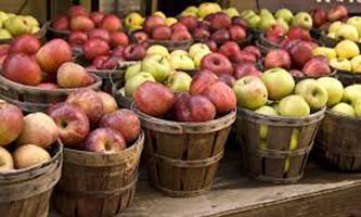 An Apple Taste Test for National Apple Month!